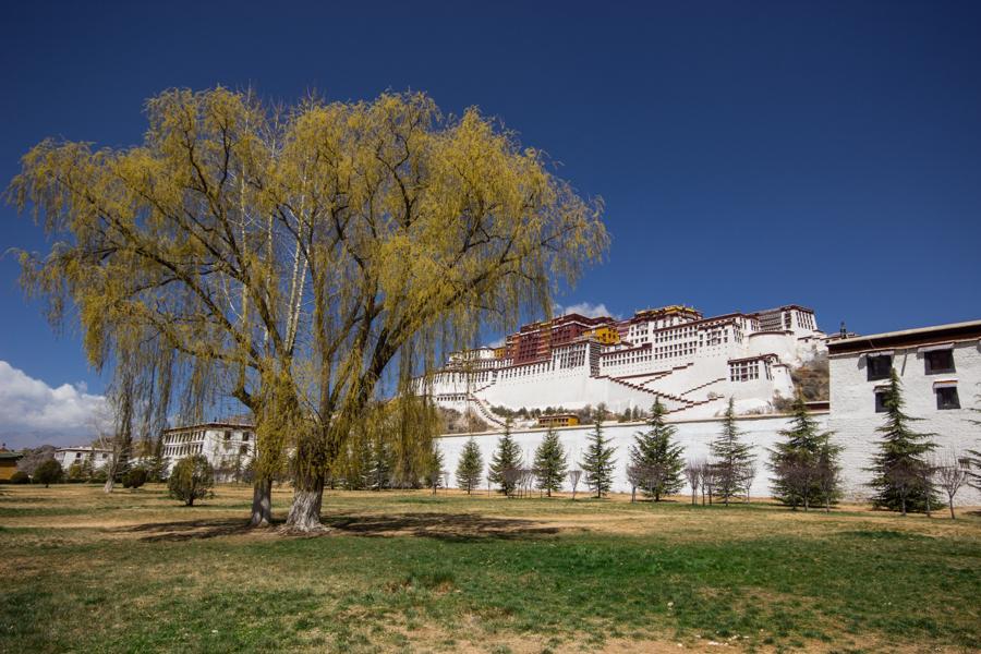 http://www.lauraportinaro.com/files/gimgs/69_potala-lhasa.jpg